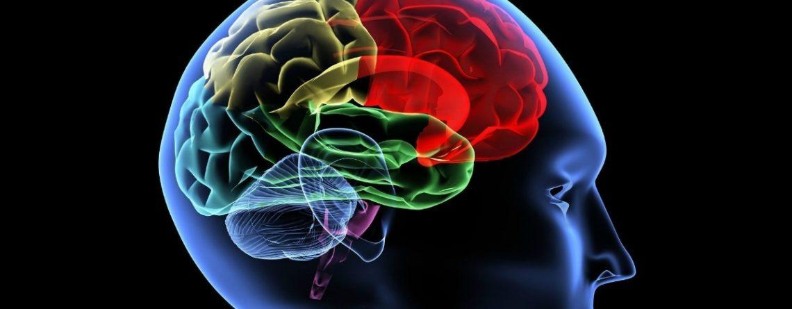 Articol Gândurile au inteligență și magnetism - Tehnologie pentru viață