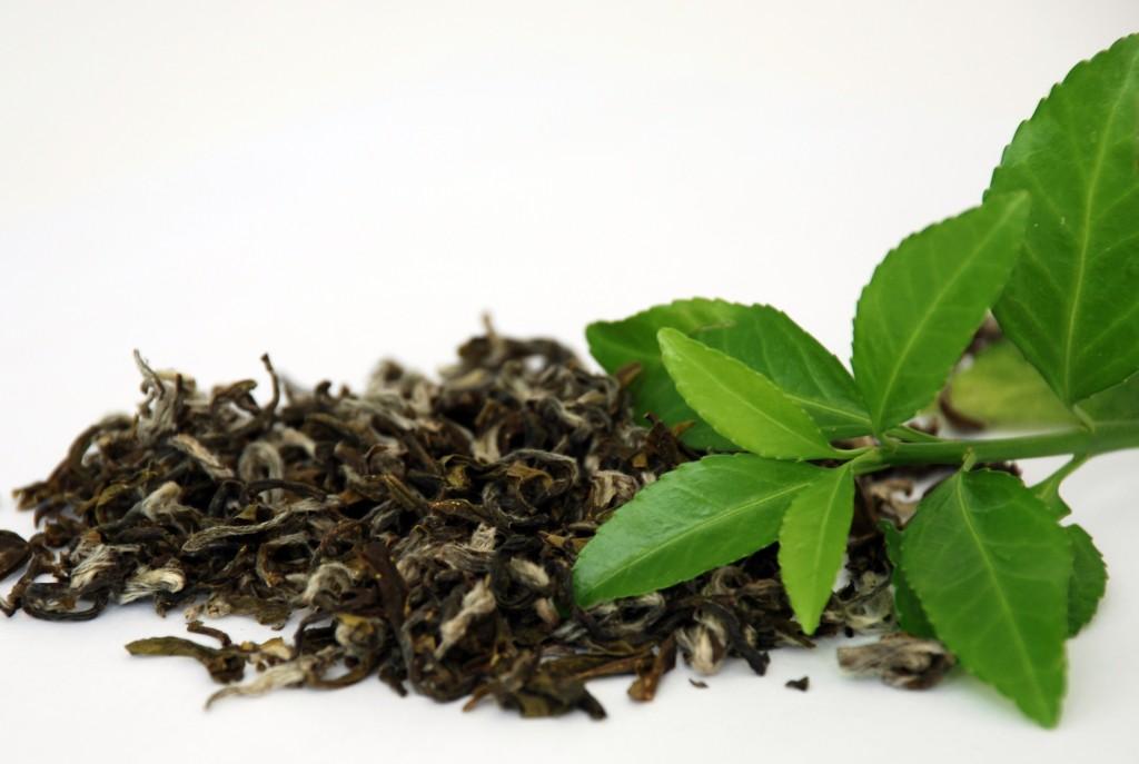 ceai verde 02