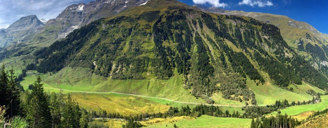 Articol Vindecă-te cu aerul de munte - Tehnologie pentru viață