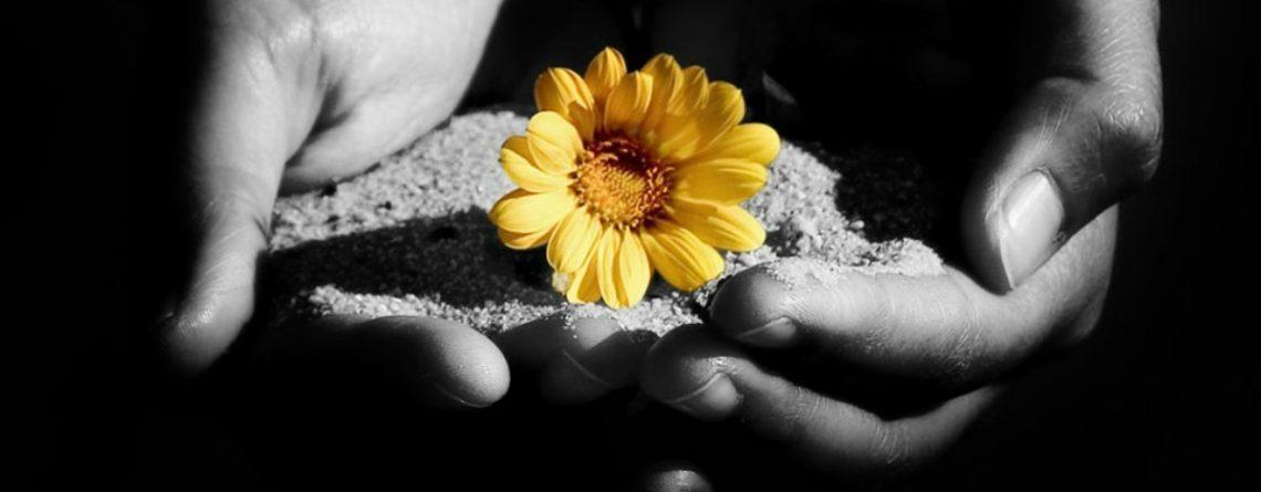 vindecare prin gandire