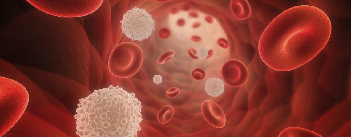 Articol Indicele glicemic, secretul unei alimentații sănătoase - Tehnologie pentru viață
