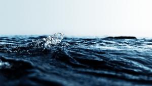 apa de ocean III