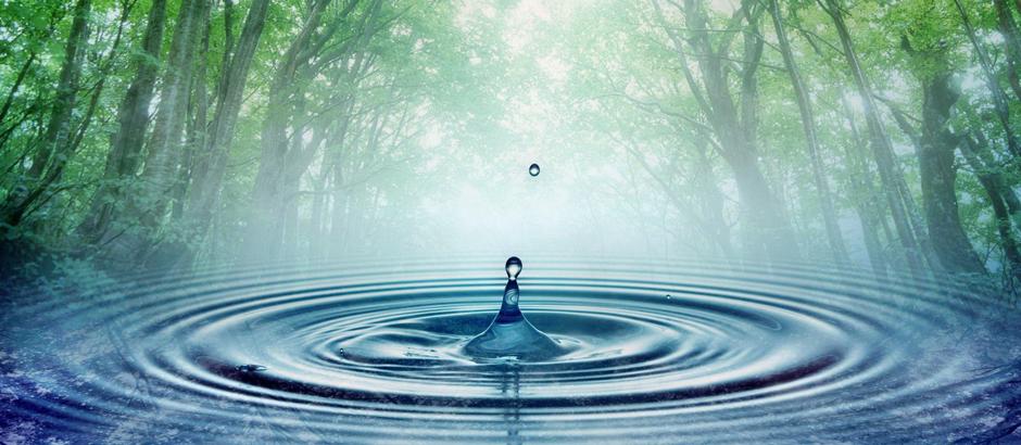 Articol Cum ia naștere apa pură? - Tehnologie pentru viață