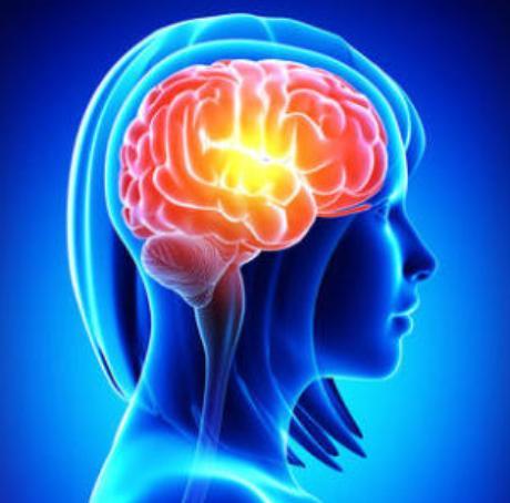creier-femeie-sistem-nervos
