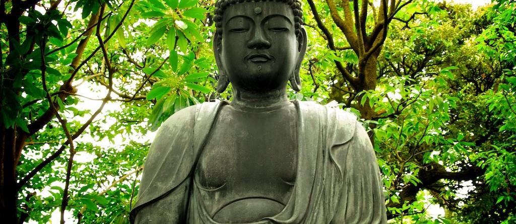 Articol Cele 5 emoții negative în filozofia budistă - Tehnologie pentru viață
