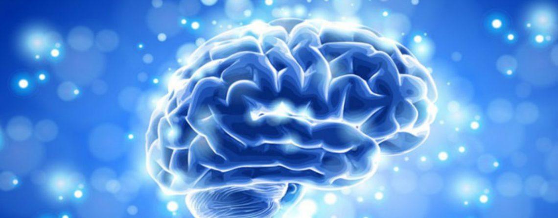 Articol 6 idei preconcepute despre creier care ne afectează rezultatele în viață - Tehnologie pentru viață