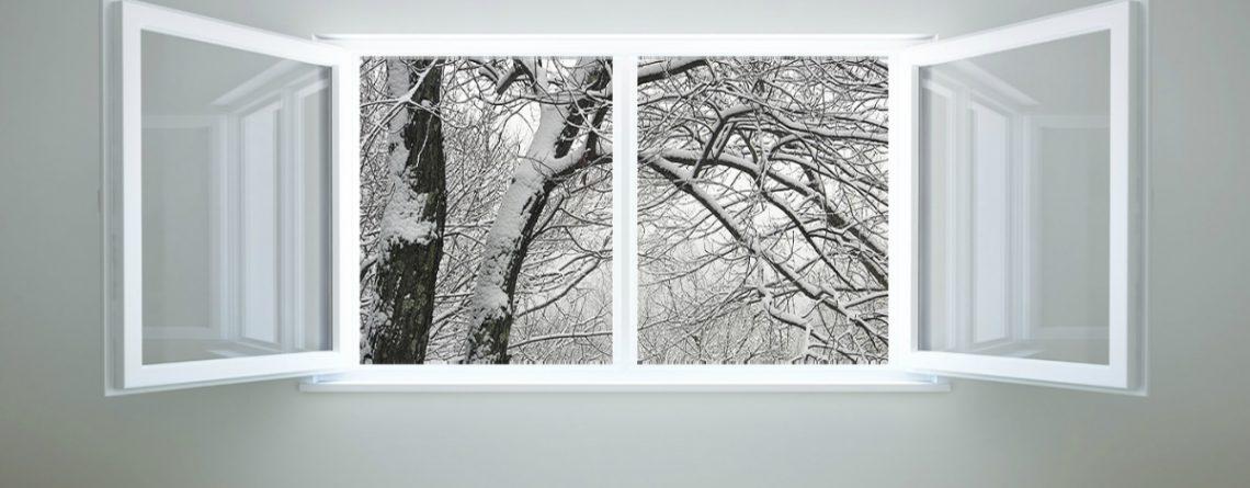 Articol 12 metode ca să ieși din iarnă cu sistemul imunitar puternic - Tehnologie pentru viață