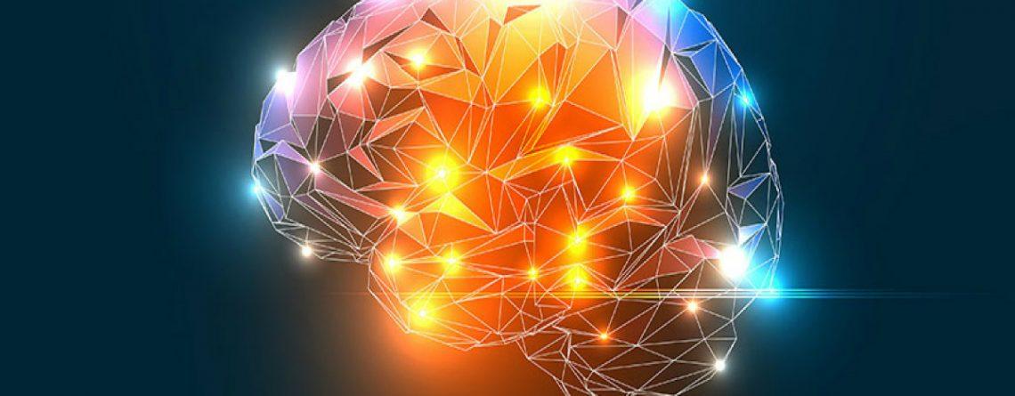 Articol Sănătatea emoțională și fizică în raport cu câmpul electromagnetic al Pământului - Tehnologie pentru viață
