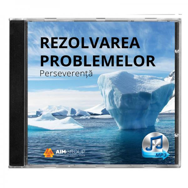 REZOLVAREA PROBLEMELOR_Perseverență